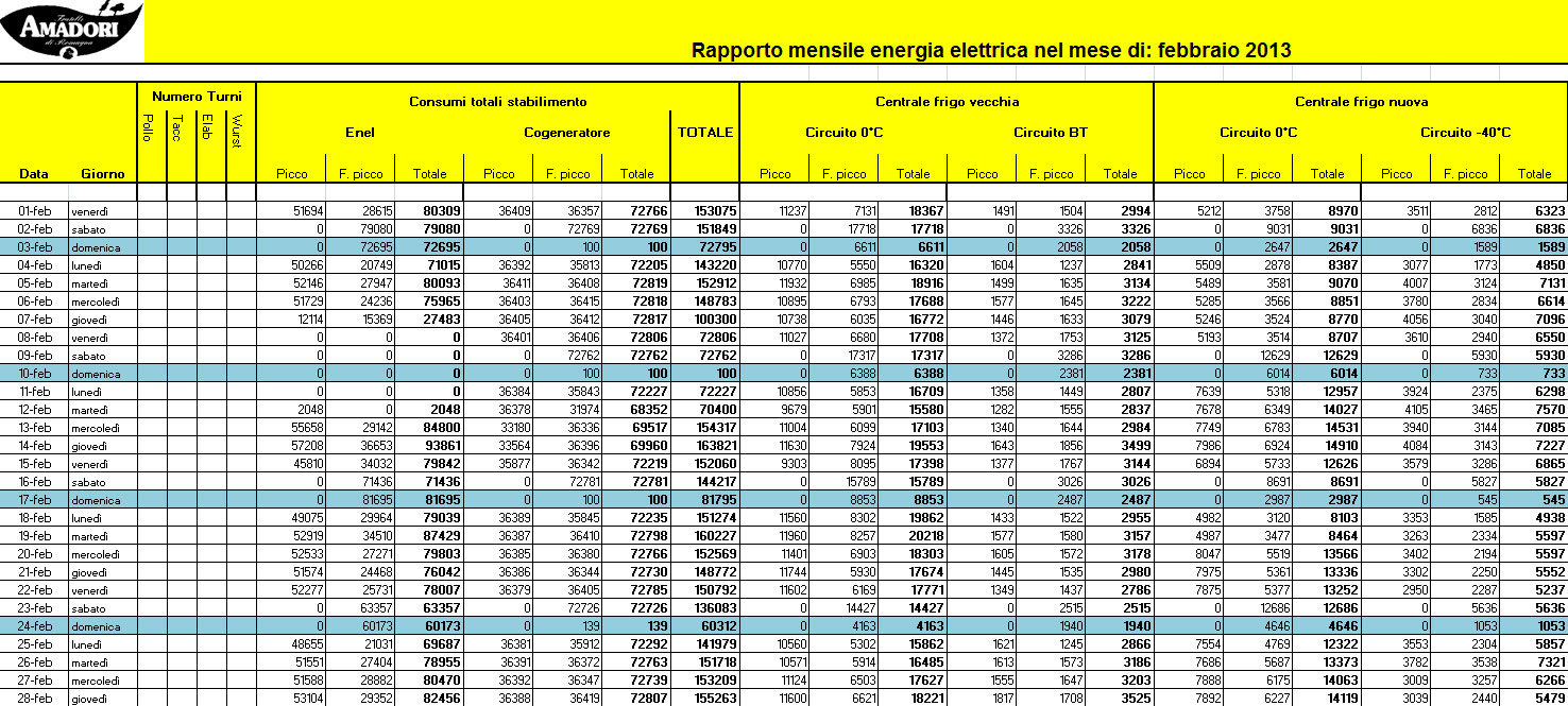 Electrex Report - Electrex - Amadori Group - Energy as a strategic resource to support growth. The ISO 50001 Energy Management System certification